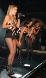 the saturdays in black pantyhose amd shorts