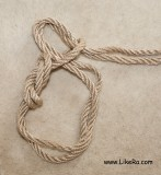 Pass the rope through the formed loop.